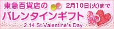 tokyu_valentine